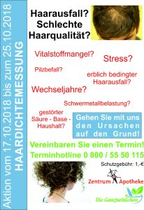 Handzettel_Plakat_Haardichtemessung_2018_10_Zentrum